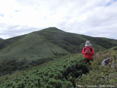 礼文岳山頂付近