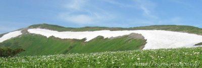 太郎平から南の高原