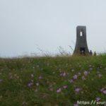 ハクサンフウロと美しの塔